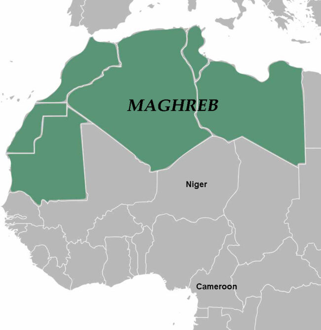 Map shows Cameroon, which Juk and Mike fled last year; Niger, where they are now surviving with difficulty; the Maghreb countries (in green), where they hope to go next; and beyond that, Europe, which they hope to reach after a dangerous crossing of the Mediterranean Sea.